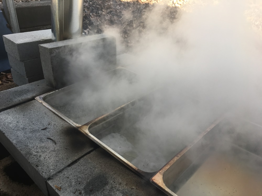 Maple sap in a homemade evaporator with rising steam.